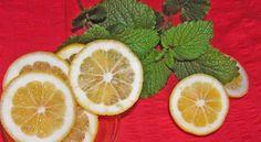 A citromfűolaj jótékony hatásai - ÉLETIGENLŐK