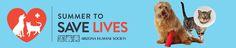 Arizona Humane Society's Summer to Save Lives 2014  telethon