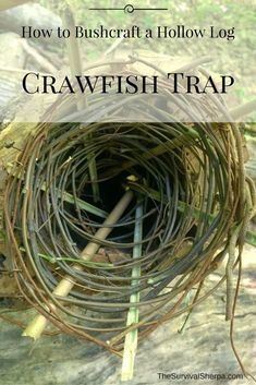 How to Bushcraft a Hollow Log Crawfish Trap - TheSurvivalSherpa. Best Picture For Bushcraft camping projects For Your Taste You are looking for something, and it is going to tell Survival Food, Camping Survival, Outdoor Survival, Survival Prepping, Survival Skills, Survival Quotes, Survival Hacks, Survival Weapons, Emergency Preparedness