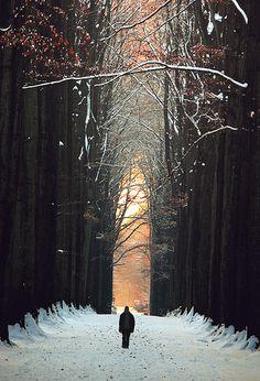 Belgium in the Winter