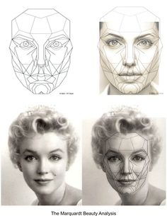 Symmetry the Measure for Facial Beauty. Plastic Surgery San DiegoIs Symmetry the Measure for Facial Beauty. Facial Anatomy, Anatomy Art, Anatomy Drawing, Art Sketches, Art Drawings, Planes Of The Face, Medical Drawings, Facial Proportions, Drawing Heads