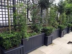 Painted Fences Fence Panels And Fence On Pinterest