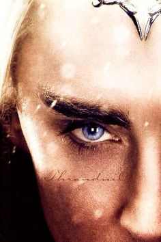 Thranduil - such is the nature of... eyebrows?!?!