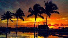 Royal Playa del Carmen, Mexico | #travel #mexico | twitter @eatlivetraveldr | Instagram eatlivetraveldrink