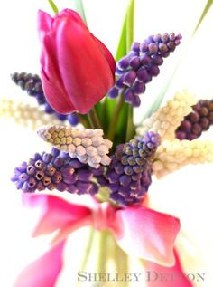 Tulip-bouquet5named--with grape hyacinth's (s