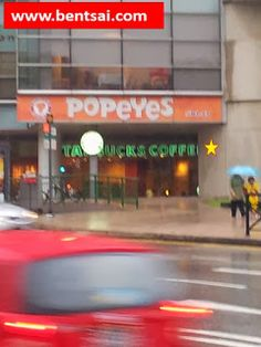 """Location of Starbucks Logo     #Singapore.#Starbucks.  Shared with Starbucks CoffeeFacebook  Moving the """"Round Logo"""" below the Popeyes name board to the """"yellow star"""" spot would prevent the obstruction of the larger Starbucks nameboard behind and would create aduplicate subliminal messageto potential customers and have a strongerinfluence in affecting their purchasing decisions.  1) This picture istaken at a point of heavy traffic flow  2) If the """"Starbucks Coffee""""signboardis slightlysmaller…"""