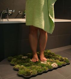 living moss bath mat, I am definitely doing this in my bathroom, but not the hall bath, cause I think the cats would think it's an extra toilet for them...