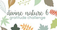The Personal Progress Helper: Divine Nature 6 Gratitude Challenge for Thanksgiving