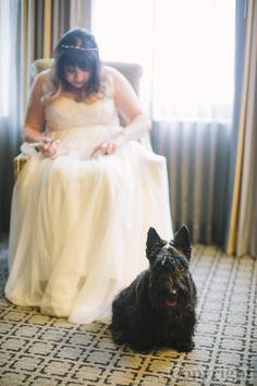 Image: j+j-51 in Jill + Joe's Wedding