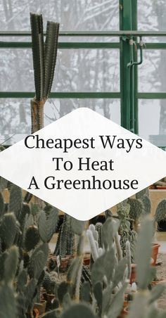 Way To Heat A Greenhouse Cheapest Ways to Heat A Greenhouse. List of 5 great resources you can use to heat your greenhouse.Cheapest Ways to Heat A Greenhouse. List of 5 great resources you can use to heat your greenhouse. Diy Greenhouse Plans, Heating A Greenhouse, Greenhouse Supplies, Outdoor Greenhouse, Backyard Greenhouse, Greenhouse Growing, Greenhouse Wedding, Diy Mini Greenhouse, Cheap Greenhouse