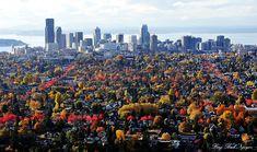 autumn in Seattle   by longbachnguyen, via Flickr