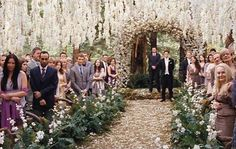 Ideas for an Adventure Wedding | Forest Wedding, Forests and ...
