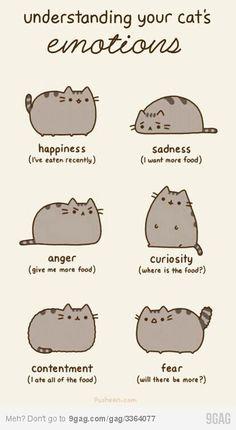cute! Love This!