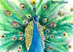 ACEO Limited Edition  His pride by annalee377 on Etsy