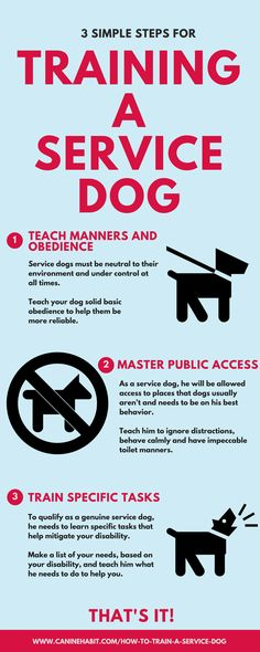 Trouble With Your Dog? Try Simple Training Techniques ** Want additional info? Click on the image. #DogTraining