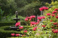 A fountain I designed for a Raleigh garden