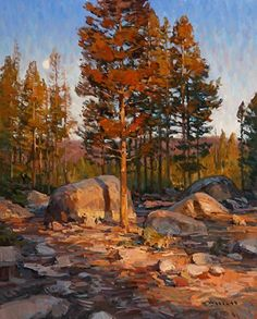Standing in the Light by Josh Elliott Oil ~ 20 x 16  My grandmother painted beautiful scenes like this. I hope to inherit some of her paintings one day.