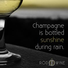 #champagne #fizzy #bubbly #celebrate #wine #sparkling #bubbles #happy #sunshine #quotes #sunny #happiness #sayings #cheers #toast
