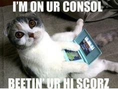 Consol Cat !