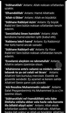 Tintin, Quran, Asda, Holy Quran