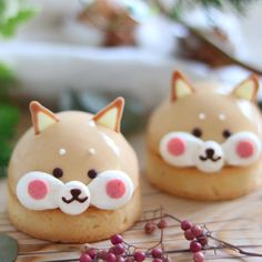 JapanCandyBox.com ❤ Japanese Candy Subscription Box : Photo