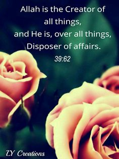 Allah is the Creator of all things