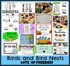 Bird Nests and Birds FREE Prezi and post all about teaching children about bird nests and birds! Plus LOTS of other TPT freebies!