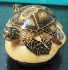 Cofre de Tagua en forma de tortuga