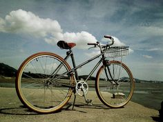 My Mixte
