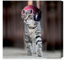 Tableau Swagg Cat by Téo Jasmin 24x24cm sur Jardindeco