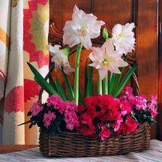 idée déco en fleurs: composition dans un panier