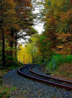 "The rangau railway, also known as ""Cadolzburg Moggerla"", Fürth forest, Bavaria, Germany 
