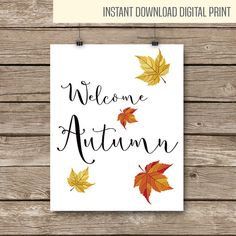 Autumn Finds v 1.0 by vallescurahandmade on Etsy