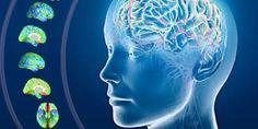 Alzheimer: flash di luci stroboscopiche per contrastare la malattia