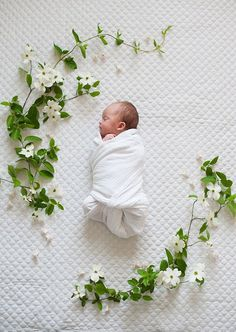Spring floral newborn photos