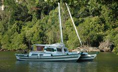 Jungleboat86aLR