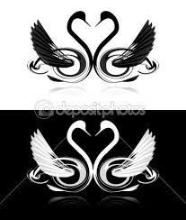 Black and White Swans - Google Search