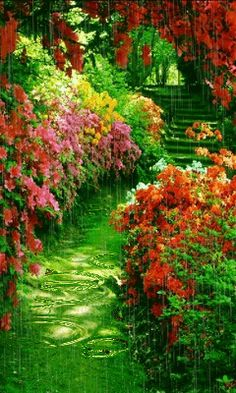 Download Animated 240x400 «Paradise garden» Cell Phone Wallpaper. Category: Nature