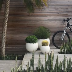 Love a bit of garden inspo before the weekend. how beautiful is this wall cladding? 🌿 Fairlight Project by in collaboration with