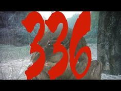 Bigfoot Hotspot Radio 2017 // SC EP: 336 A large, dark brown hairy creature