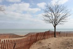 My favorite part of Lake Michigan near my family home in Evanston, IL