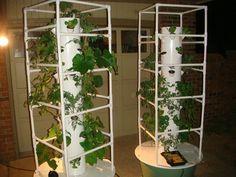 Aeroponic Tower Gardening