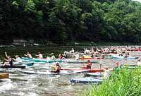 Callicoon Annual Canoe Regatta down the Delaware River