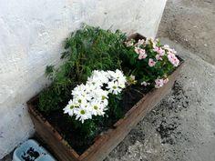 Jardinera hecha con palets. Reciclaje.