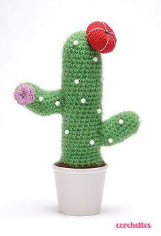 kaktus lampe erhebung images der acbafddddebe