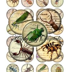 Insects - 1.5 inch circles - digital collage sheet - 047 HFD  - Printable Download. $4.20, via Etsy.