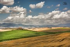 Tuscany by elioausili #nature #travel #traveling #vacation #visiting #trip #holiday #tourism #tourist #photooftheday #amazing #picoftheday