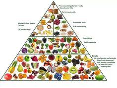 benefits being vegetarian essay