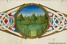 De re rustica, MS M.139 fol. 70r - Images from Medieval and Renaissance Manuscripts - The Morgan Library & Museum