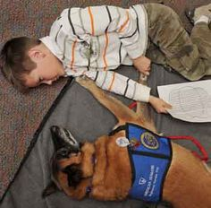 The American Humane Society and Animal Assisted Therapy